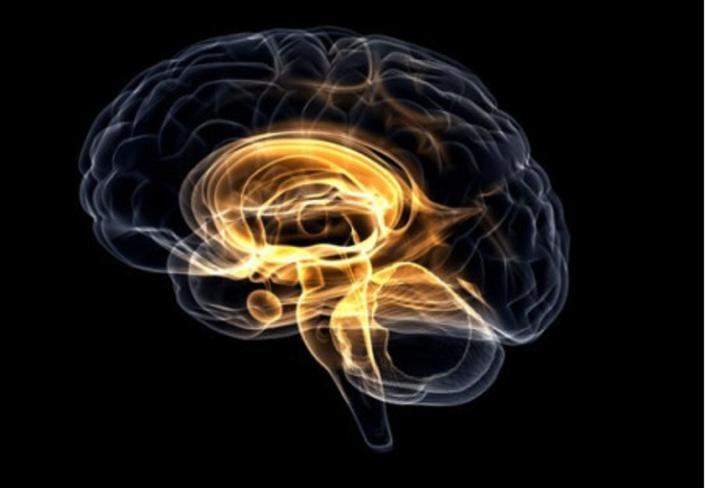 misofonia-e-amigdala